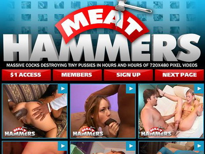 Meat Hammers